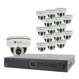16-Channel-HD-Camera-System-Alibi-sys16813ipd_1