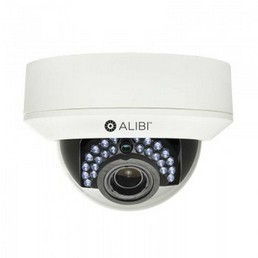 Outdoor IP Dome Security Camera- alibi-ipv3030rv_1